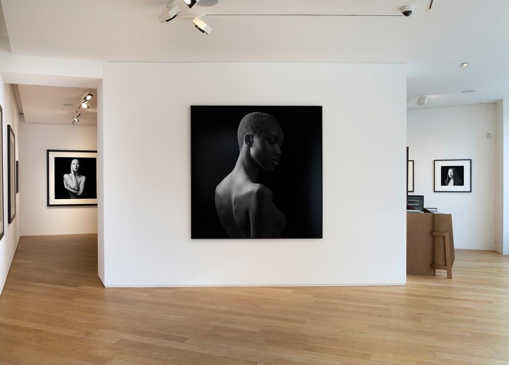 Jean-Baptiste Huynh Galerie Lelong & Co.