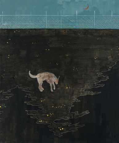 Francisco Rodriguez, Dog at night, 2019, Steve Turner