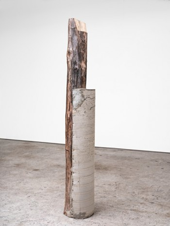 Oscar Tuazon, Family Tree (Bill / Paul), 2019 , STANDARD (OSLO)
