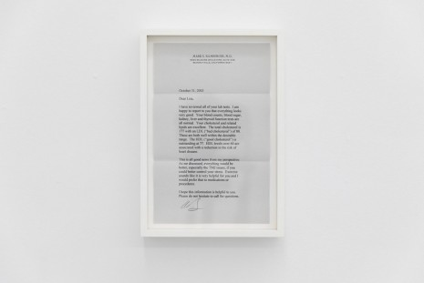 Lisa Tan, Letters From Dr. Bamberger, 2002-2010, Galleri Riis