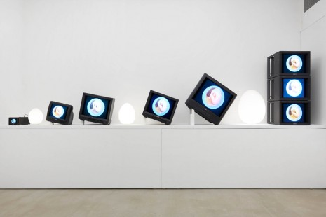 Nam June Paik, Living Egg Grows, 1994, James Cohan Gallery