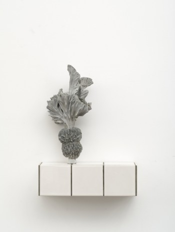 Zhang Ruyi, Individual Plant—17, 2018 , Luhring Augustine