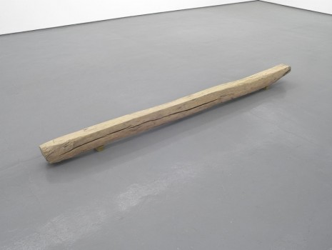 David Thorpe, Gangraena, 2012, Maureen Paley