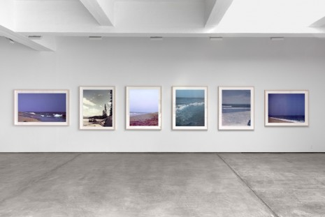 Paul Pfeiffer, 24 Landscapes, 2000/2008, Paula Cooper Gallery