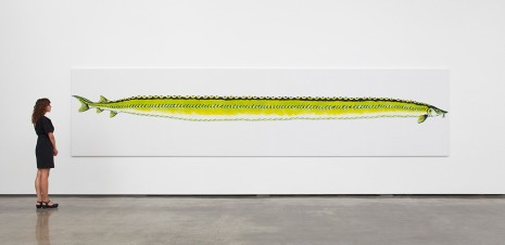 Calvin Marcus, Stretch Sturgeon, 2019 , David Kordansky Gallery