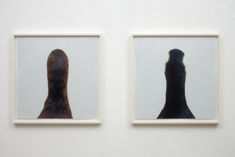 Roni Horn, Untitled No.10, 2000 , Galleria Raffaella Cortese
