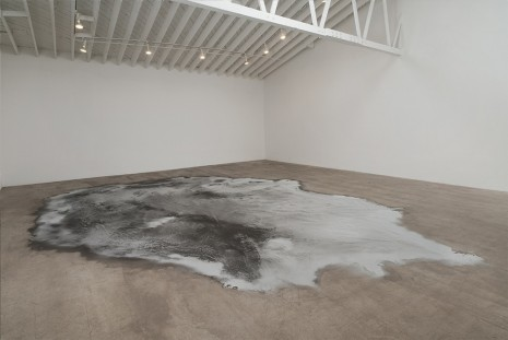 Roger Hiorns, Untitled, 2008, Marc Foxx (closed)