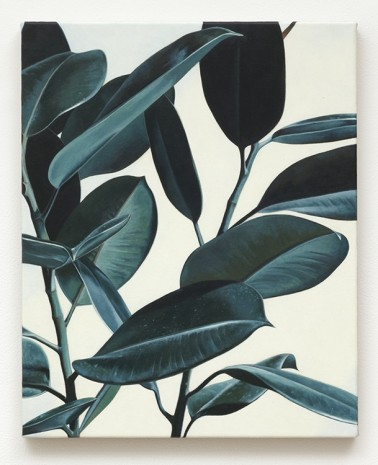 Oliver Osborne, Rubber Plant, 2012, The Approach