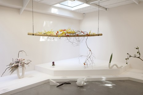 Camille Henrot, Is it possible to be a revolutionary and like flowers ?, 2012, kamel mennour