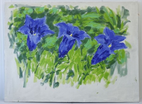 Christian Lindow, Untitled (Three Gentians), 1988, Mai 36 Galerie