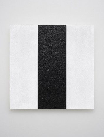 Mary Corse, 