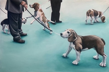Lydia Blakeley , Flock of Beagles, 2020, Steve Turner