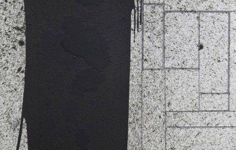 Rashid Johnson, Dancing in the Street (detail), 2012, David Kordansky Gallery