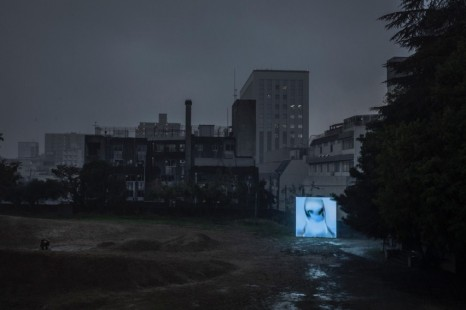 Pierre Huyghe, Of Ideal, 2019 - ongoing , Hauser & Wirth
