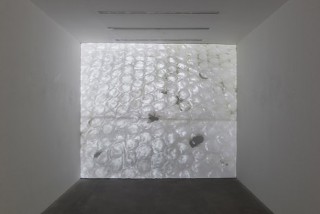 Ian Kiaer, Black tulip, onion house (detail), 2012, Alison Jacques Gallery