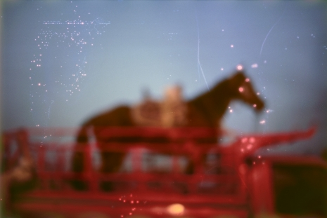 Nan Goldin, My horse, Roma, Valley of the Queens, Luxor, Egypt, 2003, Marian Goodman Gallery