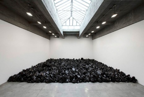 Olafur Eliasson, Your disappearing garden , 2011, Tanya Bonakdar Gallery