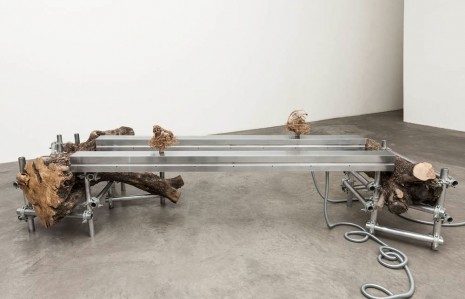 Siobhán Hapaska, the recent incarnation of two advanced souls, 2012, Kerlin Gallery