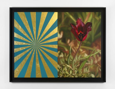 Mustafa Hulusi, Cyprus Black Tulip 6 (M) and Turquoise and Gold Expander (M), 2013, Max Wigram Gallery (closed)