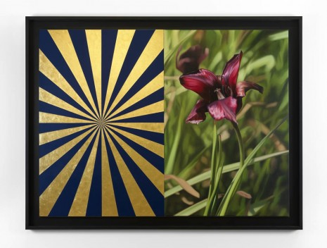Mustafa Hulusi, Cyprus Black Tulip 2 (M) and Blue and Gold Expander (M), 2013, Max Wigram Gallery (closed)