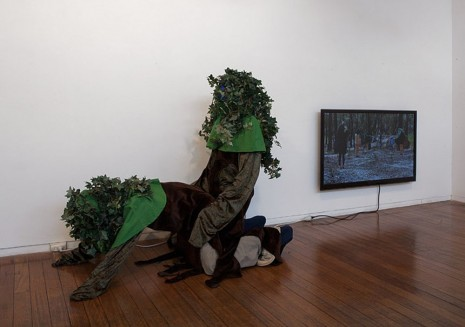 A Constructed World, Treesex, 2012, Roslyn Oxley9 Gallery