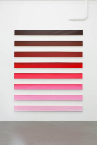 Claudia Comte, Red Snapper, 2013, BolteLang