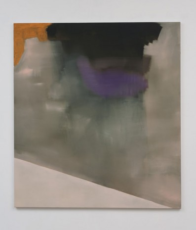 Stef Driesen, Untitled, 2013, Marc Foxx (closed)