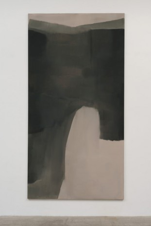 Stef Driesen, Untitled, 2012, Marc Foxx (closed)