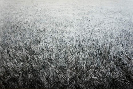 Shi Zhiying, The Infinite Lawn, 2012, James Cohan Gallery