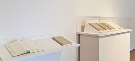 Nazgol Ansarinia, NSS book series, 2008, Green Art Gallery