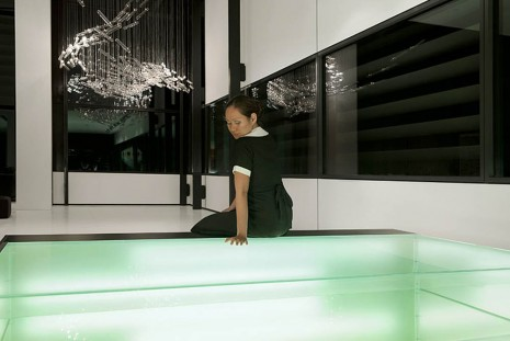 Isaac Julien, THE MAID / REFLECTIONS , 2013, Roslyn Oxley9 Gallery