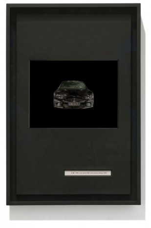 "Taryn Simon, ""C.42 2008 Aston Martin DBS (with continuity damage), 2008"", Birds of the West Indies I, 2013, Gagosian"