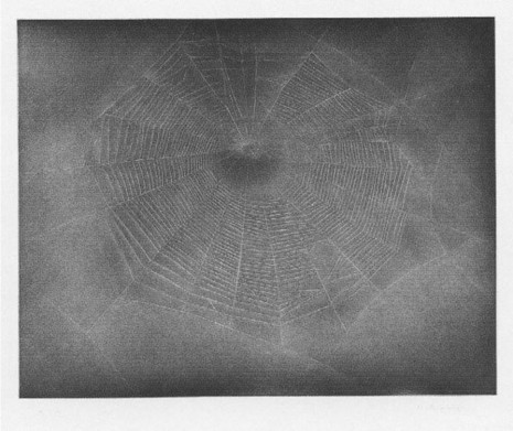 Vija Celmins, Untitled (Web 3), 2002 , Timothy Taylor