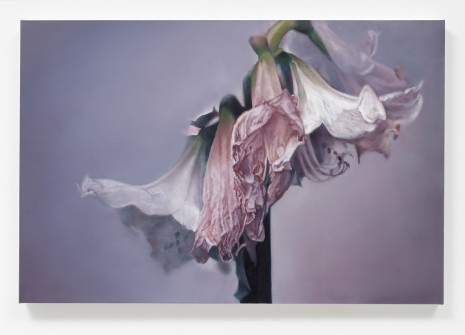 Maria Brunner, Untitled, 2014, Galerie Gisela Capitain