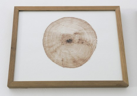 Alain Fournier, Coupe-Perchette, 2011-2014, Imprints Galerie