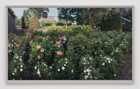 Scott McFarland, Flower Stand, Scuttlehole Road, Water Mill, New York, 2012, Regen Projects