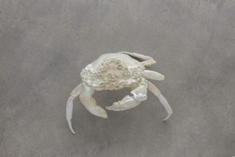 Dorothy Cross, Finger Crab, 2011, Kerlin Gallery