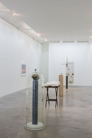 Dorothy Cross Kerlin Gallery
