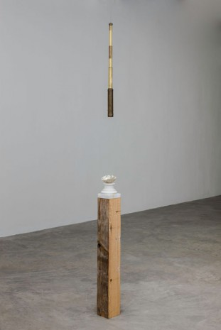 Dorothy Cross, Telescope, 2014, Kerlin Gallery