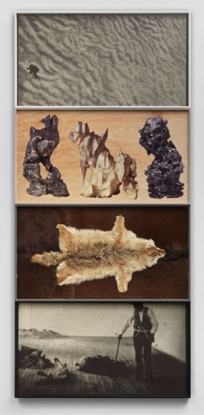 Matthew Day Jackson, A Brief History of the Domestication of Animals, 2014, Hauser & Wirth
