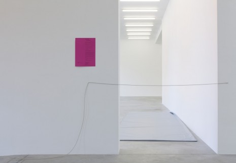 Jason Dodge, A doorway made impassibile by heated line, 2014, Galleria Franco Noero