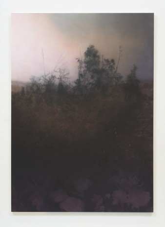 Sayre Gomez, Untitled Painting, II, 2014, Ghebaly Gallery