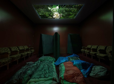 Lizzie Fitch / Ryan Trecartin, Finders Night, 2014, Regen Projects