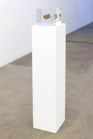 Nina Canell, Brief Syllable (compressed), 2014, Andrew Kreps Gallery