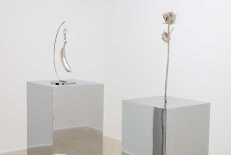 Margaret Lee, Do You See What I See (Banana and Rose), 2014, team (gallery, inc.)
