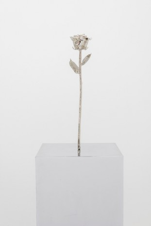 Margaret Lee, Do You See What I See (Rose), 2014, team (gallery, inc.)