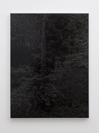 Bianca Brunner, Night (2), 2014, BolteLang