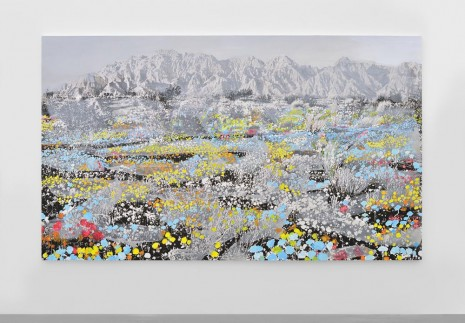 Ida Tursic & Wilfried Mille, Landscape and Blue and Pink and Yellow, 2014, Almine Rech Gallery