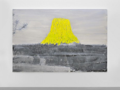 Ida Tursic & Wilfried Mille, Landscape and Yellow, 2014, Almine Rech Gallery