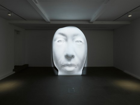 Tony Oursler, GEN, 2014, Lisson Gallery
